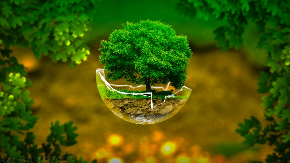 How To Live Green Along With Your Power